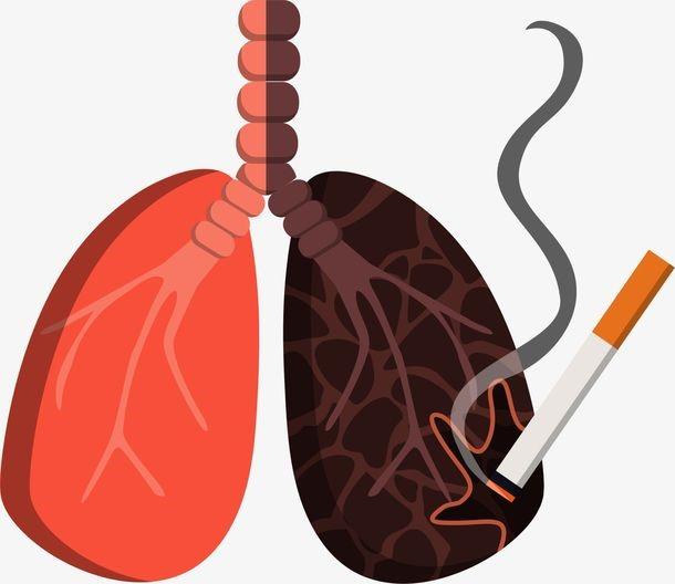 烟无多少总有害